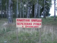 Березовая роща Дюдиково